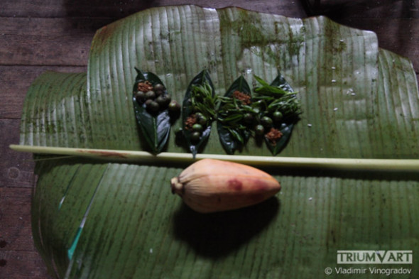 SishuanBannaflora-046-web