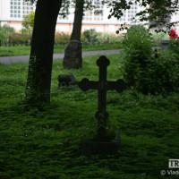 bestphoto-11