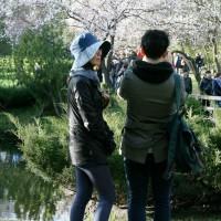 webphoto-155