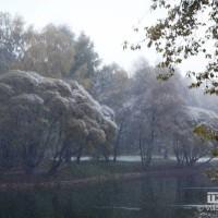 опервый снег 303
