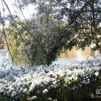 опервый снег 374
