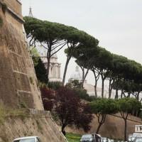 Римские каникулы 880