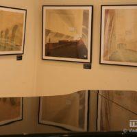 выставка 361