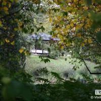webphoto-15-3
