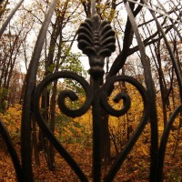 кованые кленовые листья