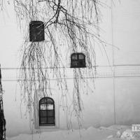 webphoto-10