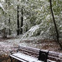 опервый снег 262