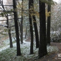 опервый снег 300