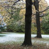 опервый снег 632